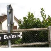 Le buisson